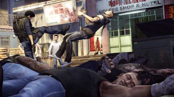 sleepingdogs anh2