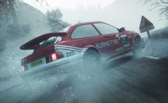 DiRT Rally anh2