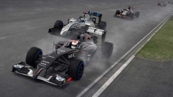 F1 2014 anh1